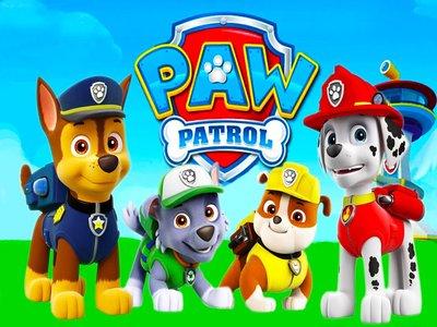Paw Patrol Pups
